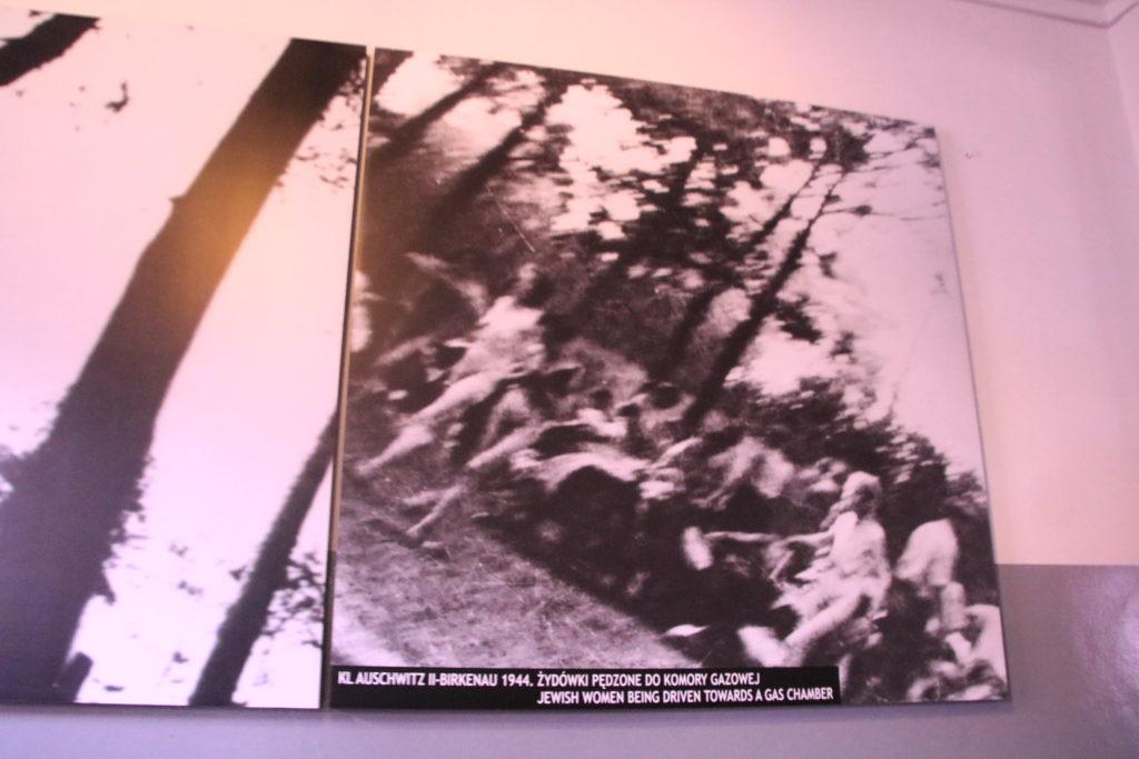 sonderkommande, extermination de femmes juives par les nazis à Auschwitz